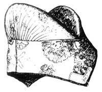 кибалка